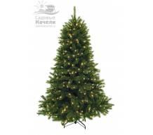 Triumph Tree Ёлка Лесная красавица зеленая 185 см. 224 лампы